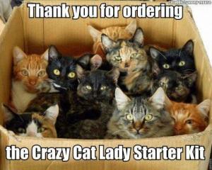 crazy-cat-lady-kit